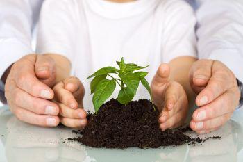 Növényvédelmi technológiák összeállítása